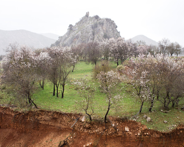 Babis Kougemitros front page picture, landscape in Greece